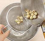 recip-hasunomi2